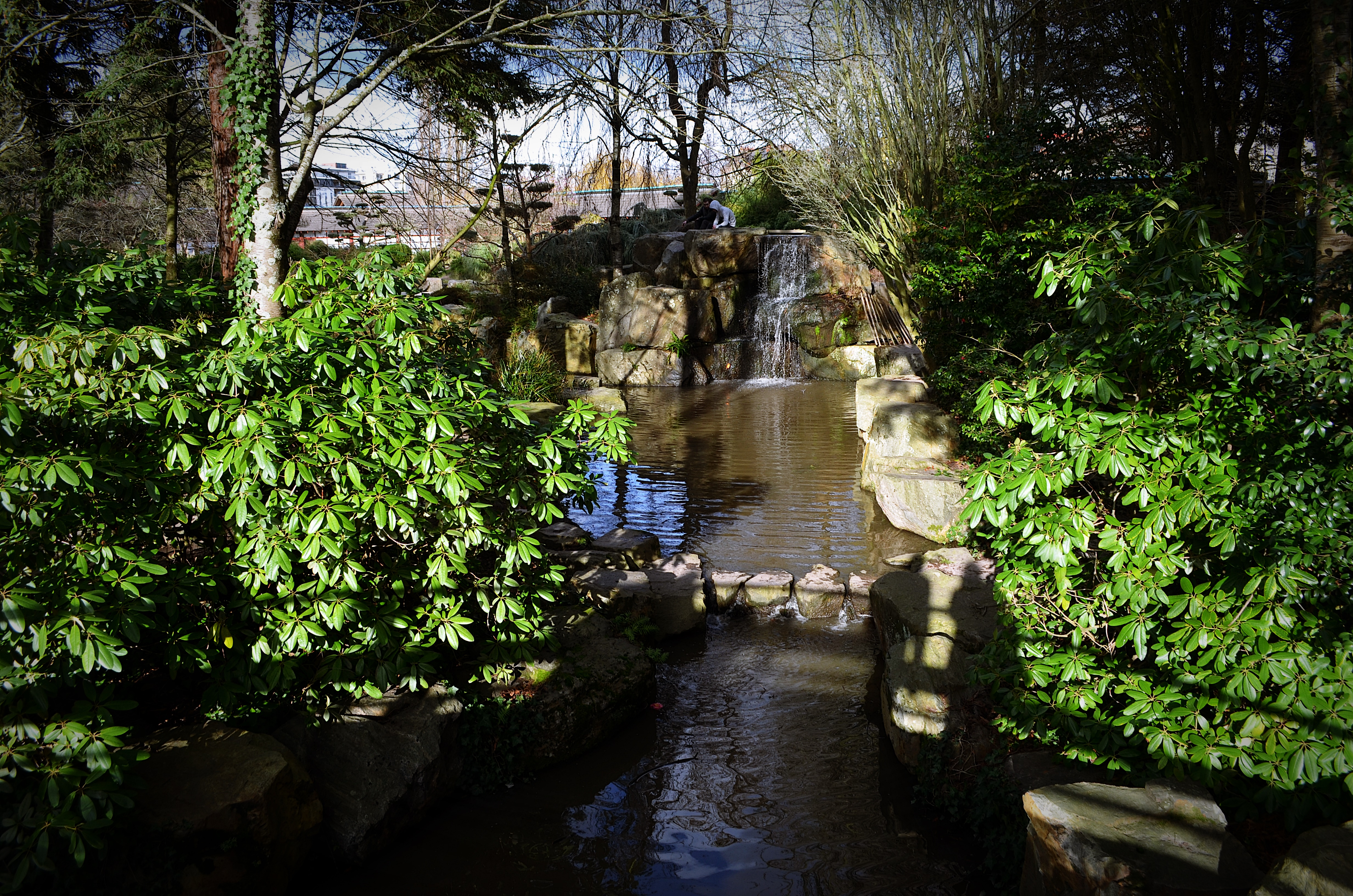 Cascade du jardin japonais shoot de tout for Cascade jardin japonais