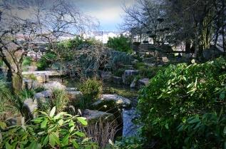 Point d'eau du jardin Japonais de l'île de Versailles à Nantes