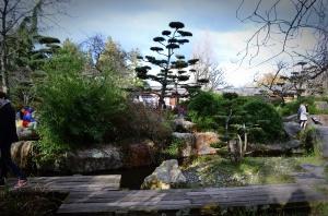 Paysage du jardin Japonais de l'île de Versailles à Nantes