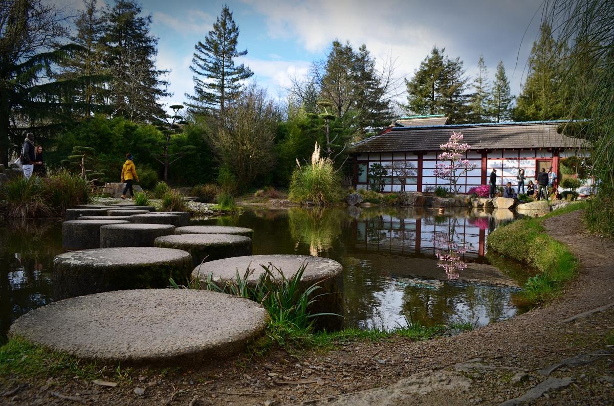 Le jardin de l'île de Versailles: un petit bout de Japon à Nantes