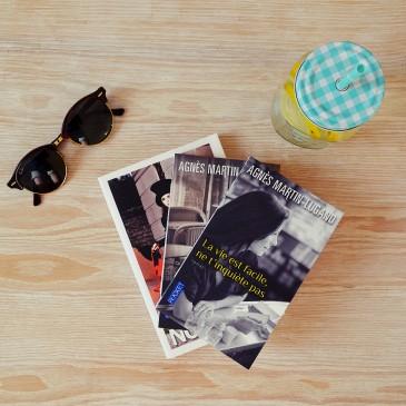 Les p'tites lectures #2 Amélie Nothomb, Agnès Martin-Lugand, blog, lecture, nantes