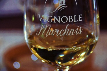 vignoble marchias23