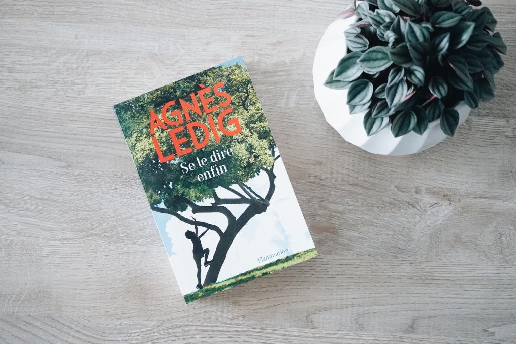 Agnès Ledig, dernier roman, Enfin se le dire